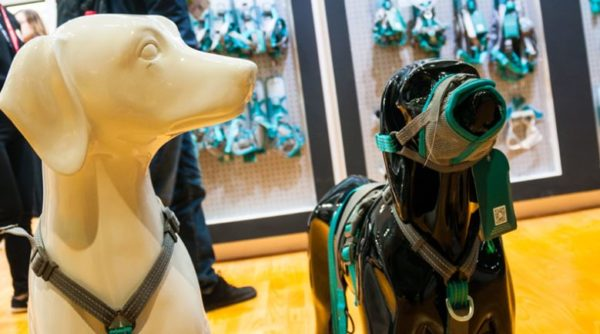 Chinese Pet Product Suppliers Doggedly Pursue Domestic Market Growth_HKTDC sourcing